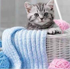 Как стирать вязаные вещи в машинке и руками