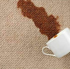 Как быстро вывести пятна от чая и кофе с ткани и коврового покрытия